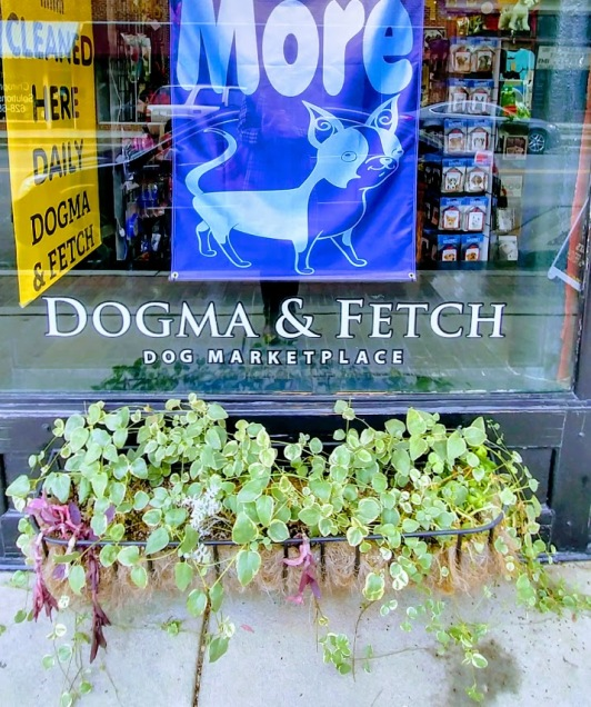 Dogma and Fetch 5